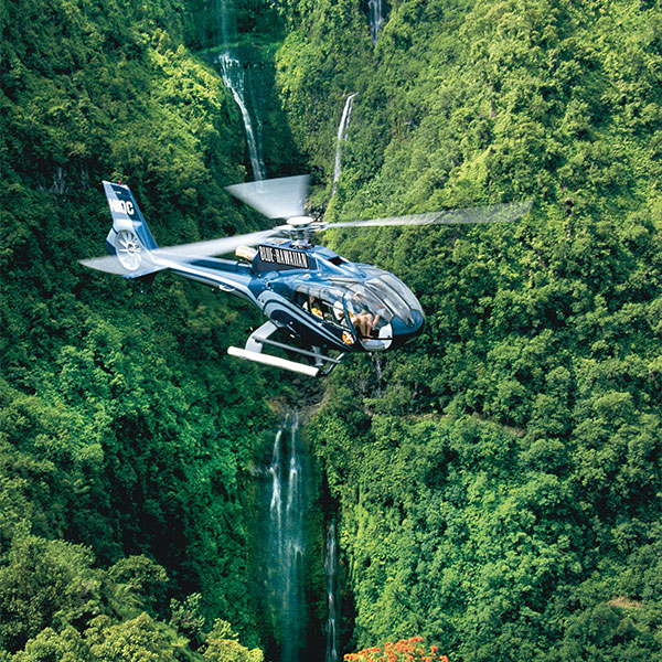 hawaii helicopter tour crash with Helicopter Tour Kauai Princeville on Five Dead Fiery Plane Crash Skydiving Trip Hawaii in addition Helicopter Crashes Into Pearl Harbor together with Helicopter besides Story03 additionally Us Marine Remembered In Amble.